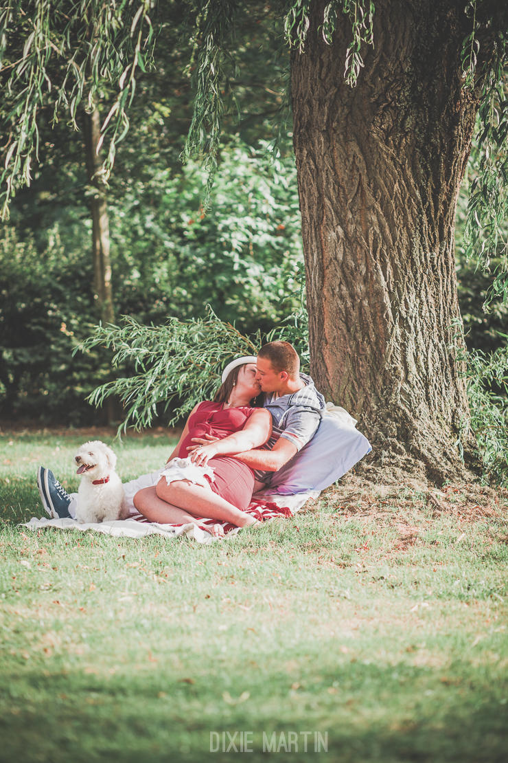 session maternité, séance maternité, nord-pas-de-calais, dixie martin photographe, dixie martin photographe, grossesse, maternité, aire-sur-la-lys, séance chien